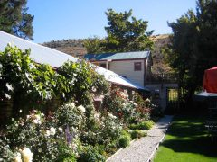 Cardrona Hotel garden with roses growing up building